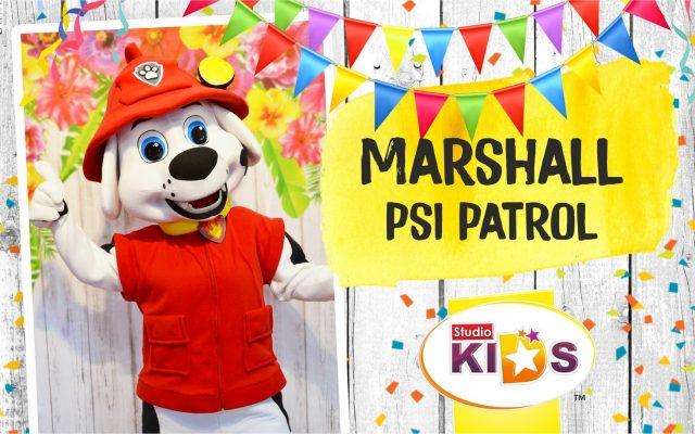 Marshall z Psi Patrol